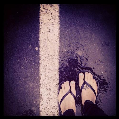 raindrops and piggies
